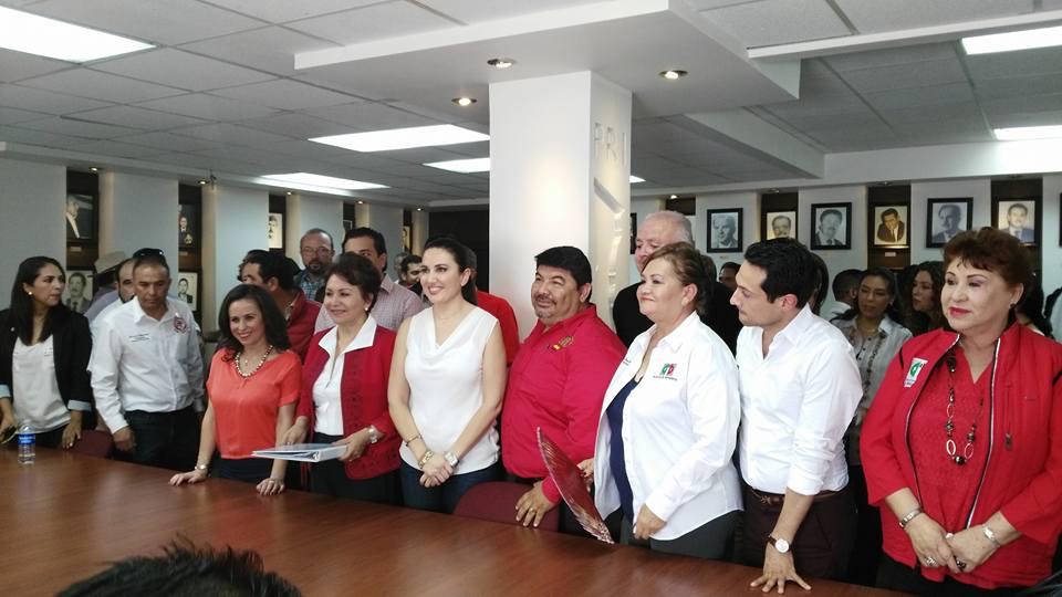 Mayra Robles, precandidata del PRI