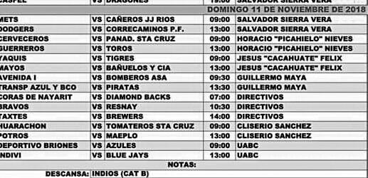 Guerrero sale favorito hoy ante Toros a las 13:00 horas