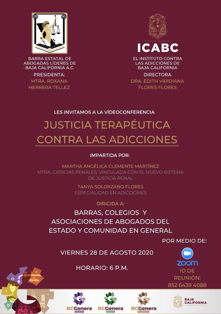 """Invitan video conferencia """"Justicia Terapéutica  contra las Adicciones"""""""